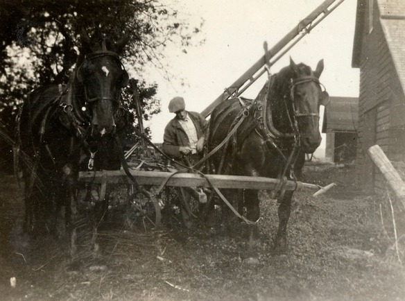 Working on the Wayne, Nebraska farm with the team of Flory and Nellie, 1930