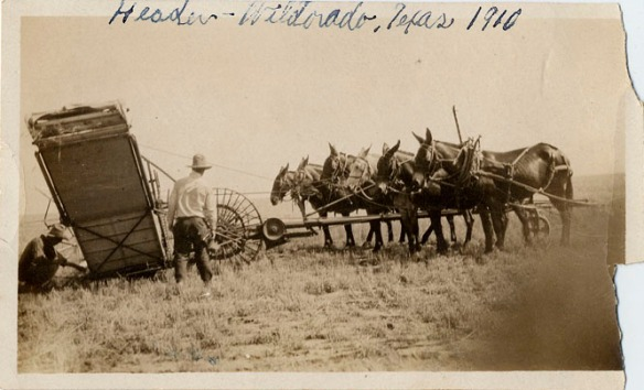 1910 header Wildorado TX