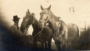 1910 man with 2 horses