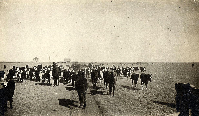1910 Wildorado TX ranch
