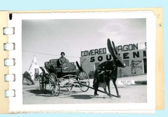 jeanie buggy 1955